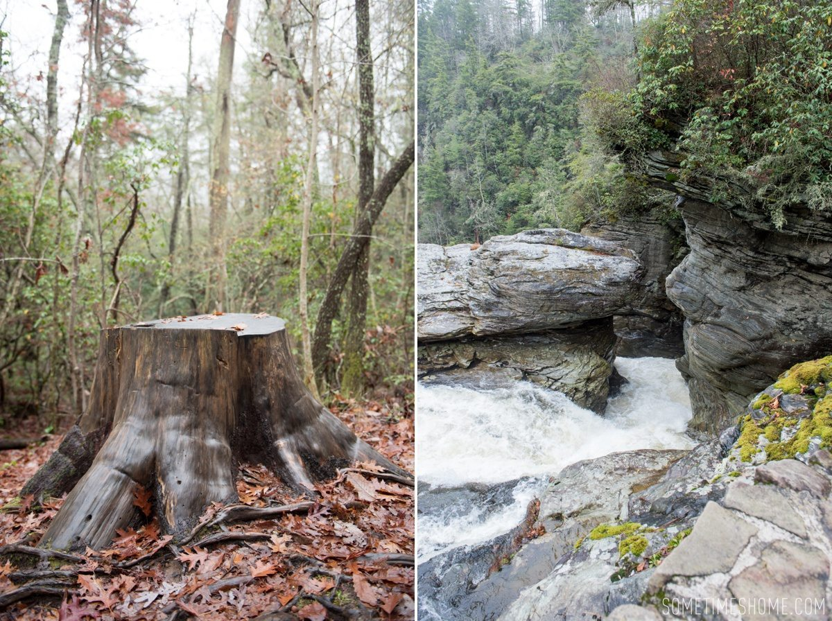 Boone, North Carolina fall foliage travel photos by Mikkel Paige Photography, Raleigh wedding photographer. Sometimes Home 30-something travel blogger. Linville Falls hike in the fog.