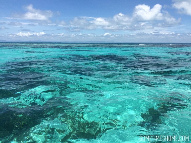 First time snorkeling travel article blog post in Belize by Sometimes Home.