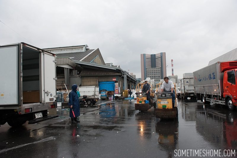 Early morning experience and photos at Tsukiji Fish Market in Tokyo, Japan by Sometimes Home Travel Blog. The working market is almost done for the day at 6:00am.