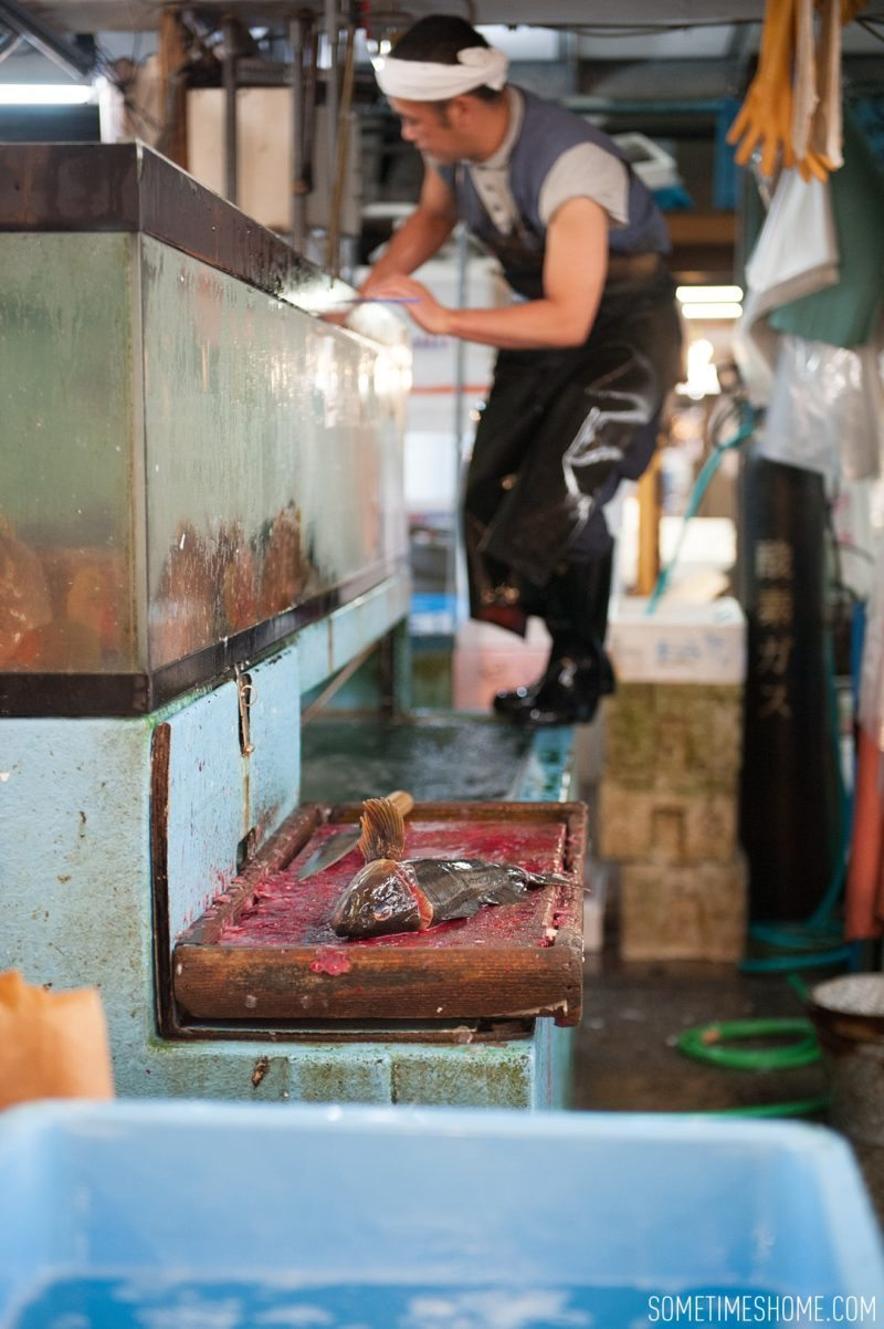 Experience and photos at Tsukiji Fish Market in Tokyo, Japan by Sometimes Home Travel Blog. Picture of vendors stands in the market.