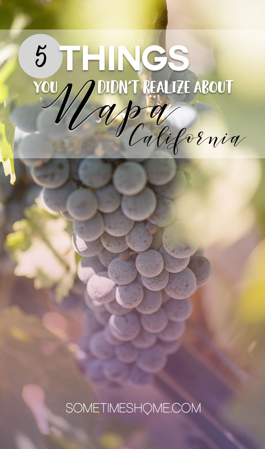 5 Things You Didn't Realize About Napa, California on Sometimes Home travel blog.