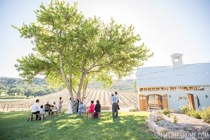 Contributor Announcement: Department of Wandering for Mikkel Paige of Sometimes Home travel blog. Article with advice for destination wedding locations. Photo from California's Hammersky Vineyard.