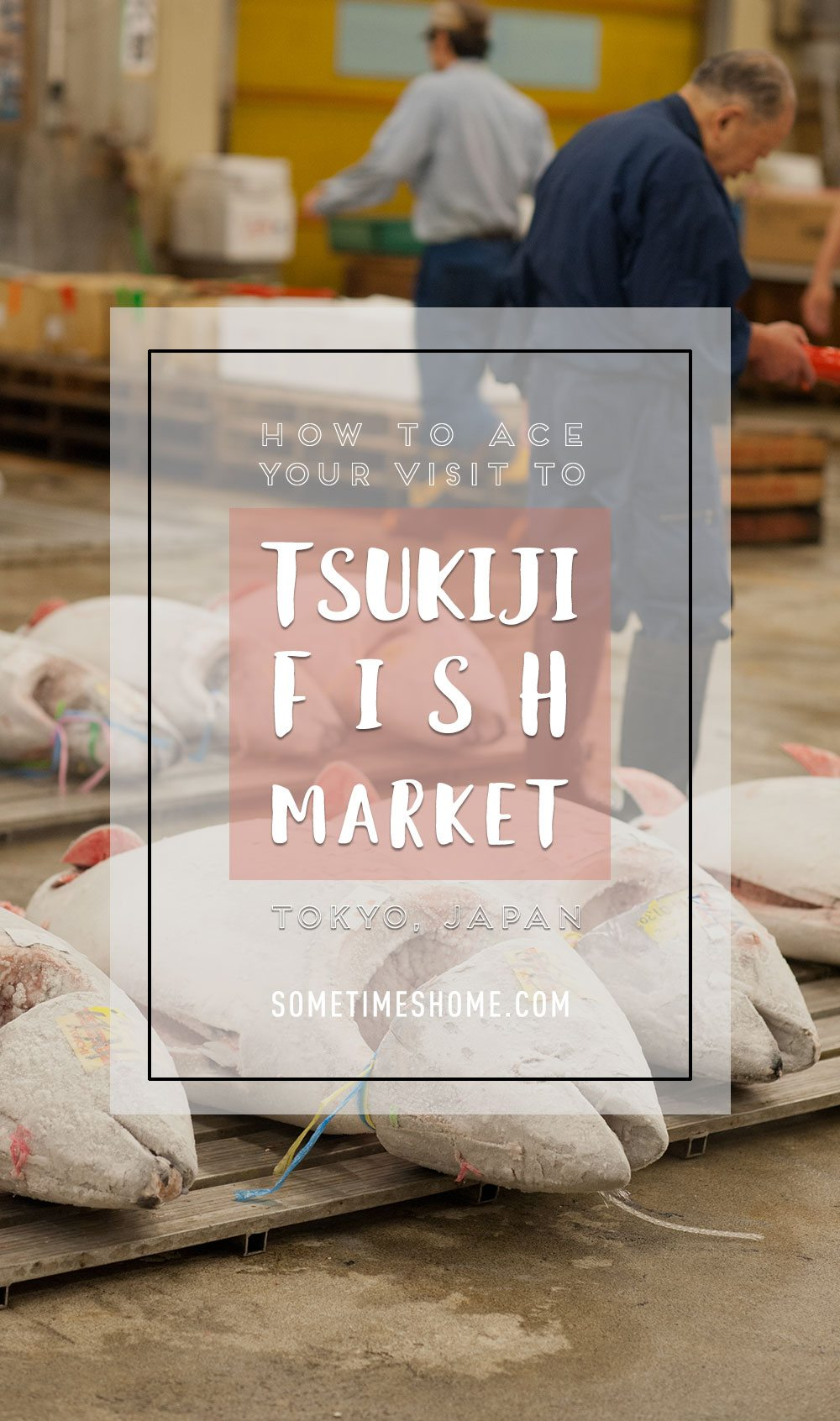 How to ace your visit to Tsukiji Fish Market in Tokyo, Japan on Sometimes Home travel blog. Tuna auction, tips, vendors and visit information with photos.