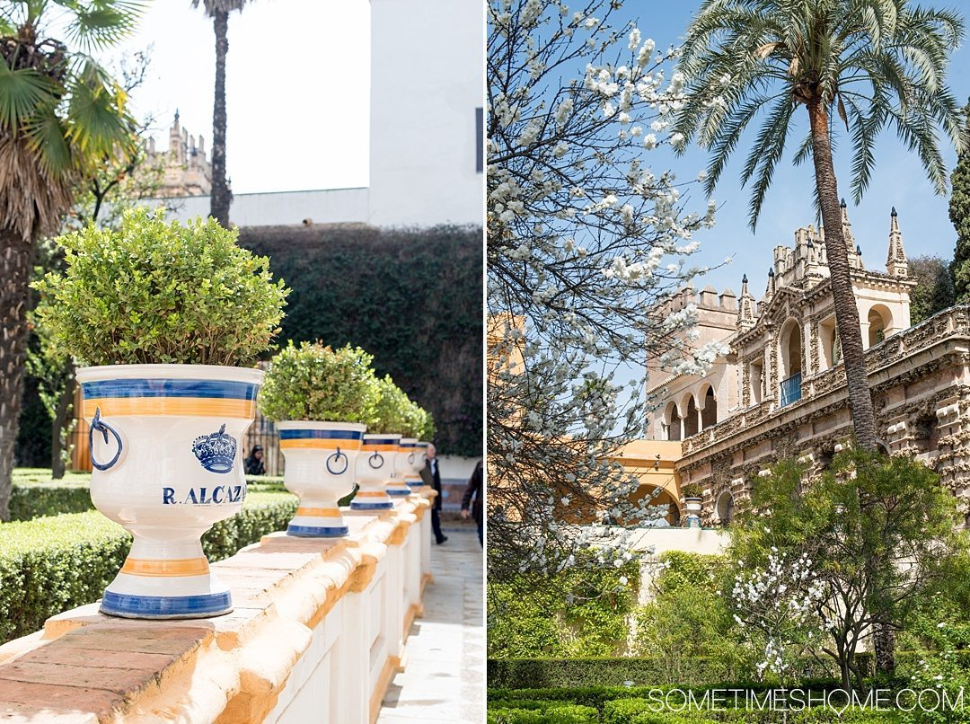 You Haven't Seen Seville Until You've Visited These 3 Sites, by Sometimes Home travel blog. Photo of Real Alcazar exterior gardens.