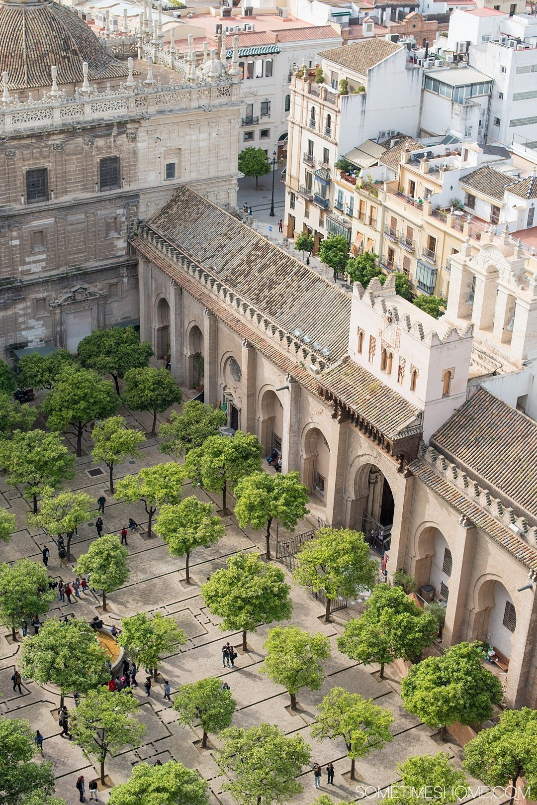 You Haven't Seen Seville Until You've Visited These 3 Sites, by Sometimes Home travel blog. Photo of Seville Cathedral courtyard and orange trees from an aerial view.
