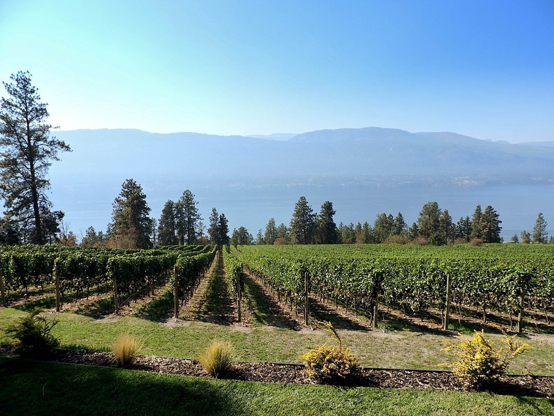 Fantastic Fall Destination Ideas Around the World on Sometimes Home travel blog. Picture of The the Okanagan in British Columbia by Elise of Eat, Work, Play.
