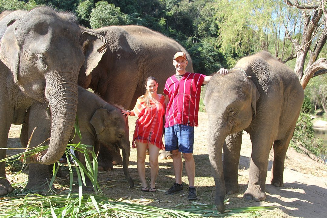 Vital FAQs Answered About Patara Elephant Farm in Chiang Mai. Information by Sometimes Home travel blog. A photo participating in Elephant Owner for a Day.