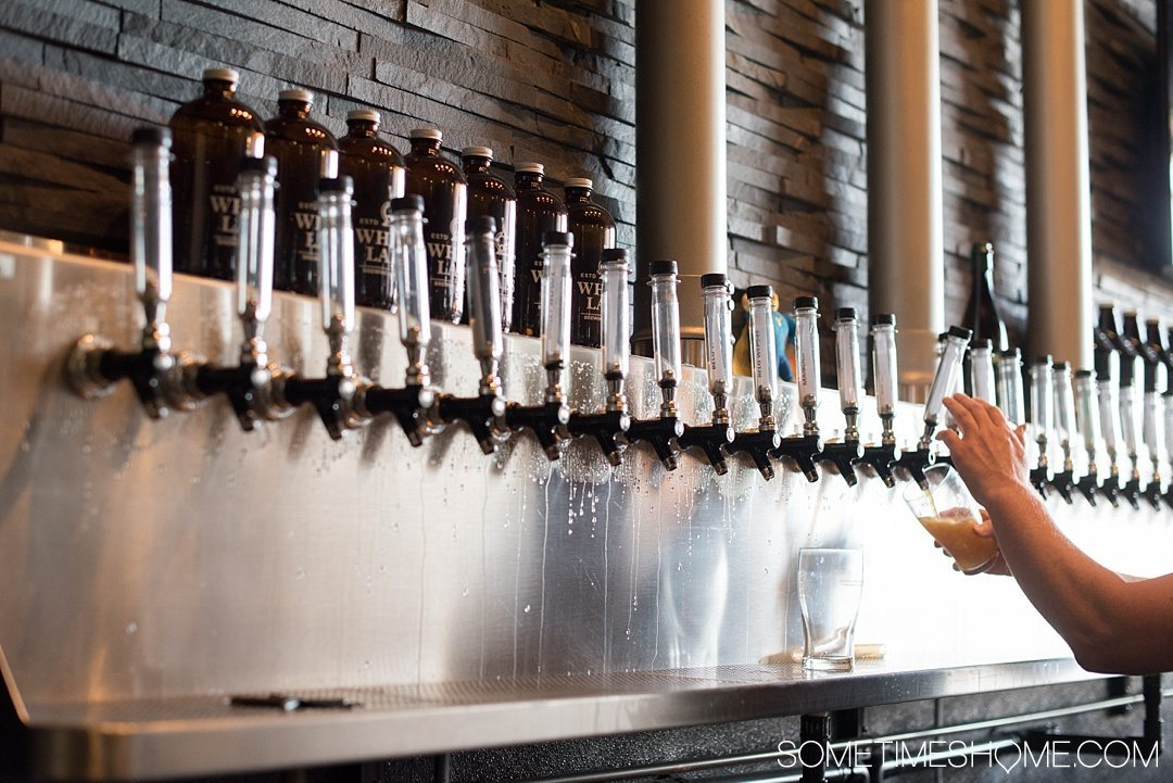 Self Guided Day Tour of the Best Breweries in San Diego on Sometimes Home travel blog. Photo of White Labs.