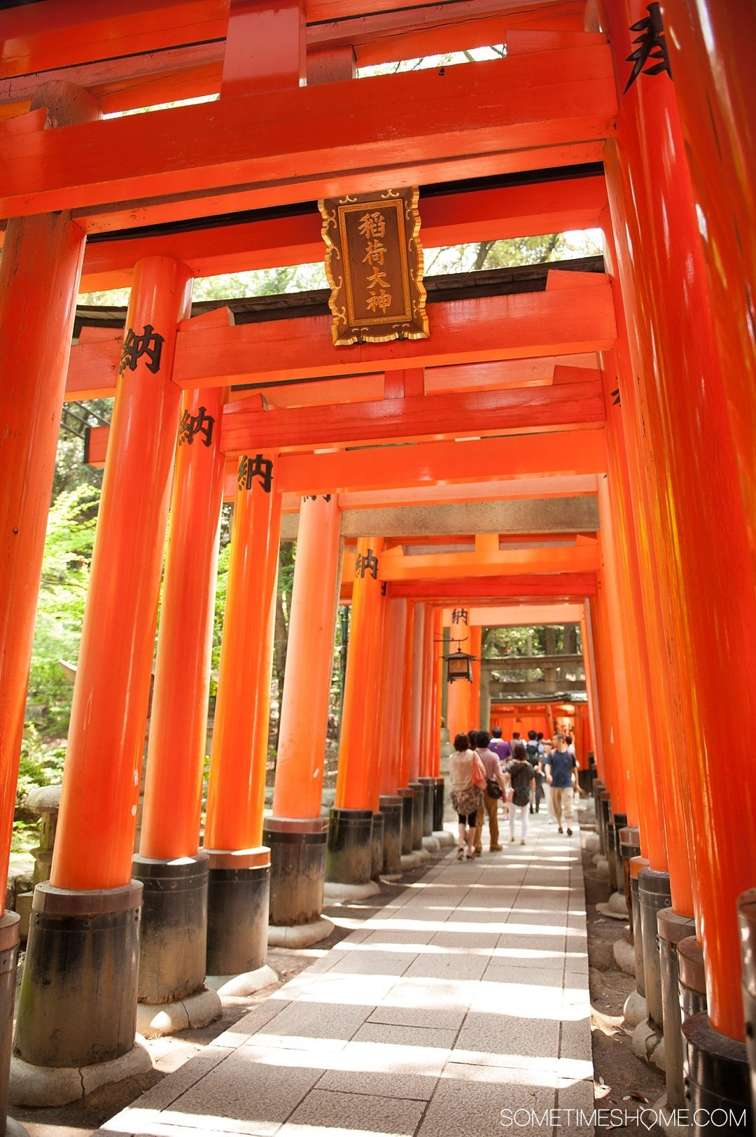 12 Inspiring Photos of Kyoto Japan on Sometimes Home travel blog. Picture of Fushimi Inari-taisha red gates shrine.