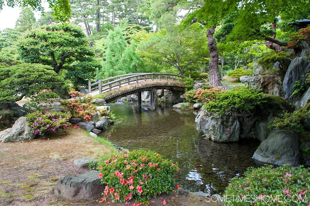 12 Inspiring Photos of Kyoto Japan on Sometimes Home travel blog. Picture of a Japanese garden at the Imperial Palace.