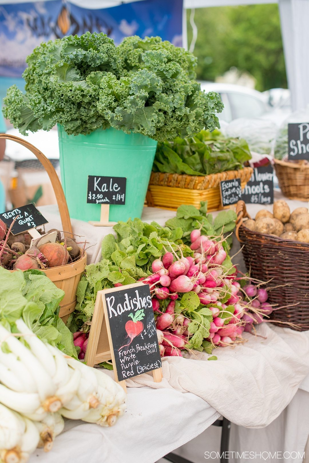 Your Complete Guide to Saugerties, New York on Sometimes Home travel blog. Photo of the farmers market offerings.