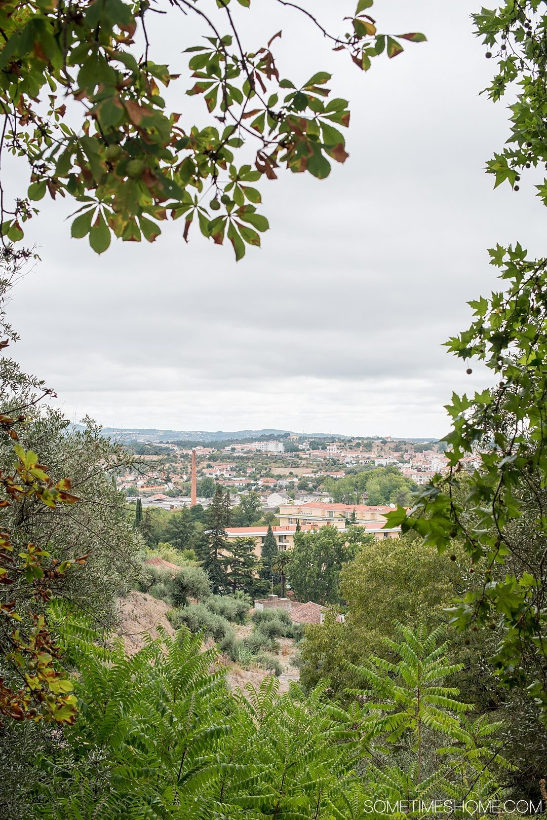 Amazing Day Trip from Lisbon to Tomar Portugal. Photos, tips and advice on Sometimes Home travel blog. Picture of the city view from Mata Nacional dos Sete Montes.