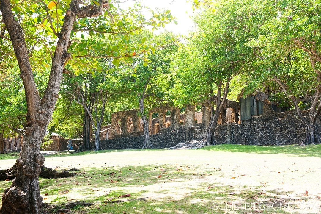 Must Do Activities to Revel In on Vacation in St. Lucia on Sometimes Home travel blog. Photos of Pigeon Island's ruins.