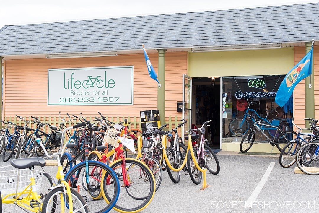 Things to do in Milford, a quaint town in Delaware Kent County that packs a lot of punch! Travel to this great small city to experience great art culture, photography, wonderful food options, and even crafts to participate in. I loved that they have bike rentals too. Check out this awesome town by Dover in the nation's first state and click through to read the entire article! #delaware #milfordDE #milford #quaintvillages #kentcounty