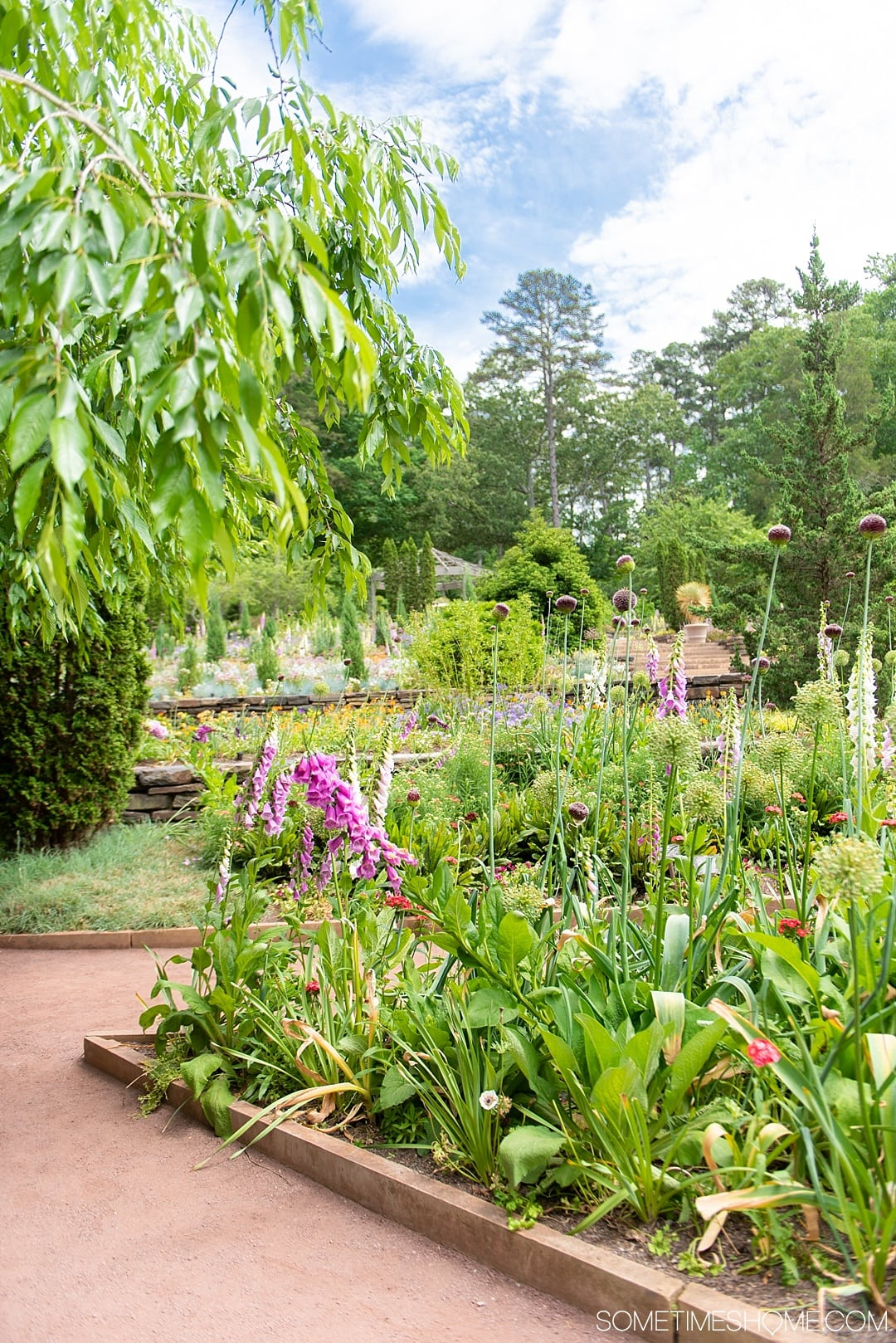 The 12 Best Photography Spots in Durham, North Carolina include art, greenery, a very special part of Duke campus, downtown scenery and more. Click through to read the specifics on this beautiful free entrance garden on Sometimes Home! #DurhamNC #NorthCarolina #DurhamNorthCarolina #Duke #VisitNC #photographyspots #photography