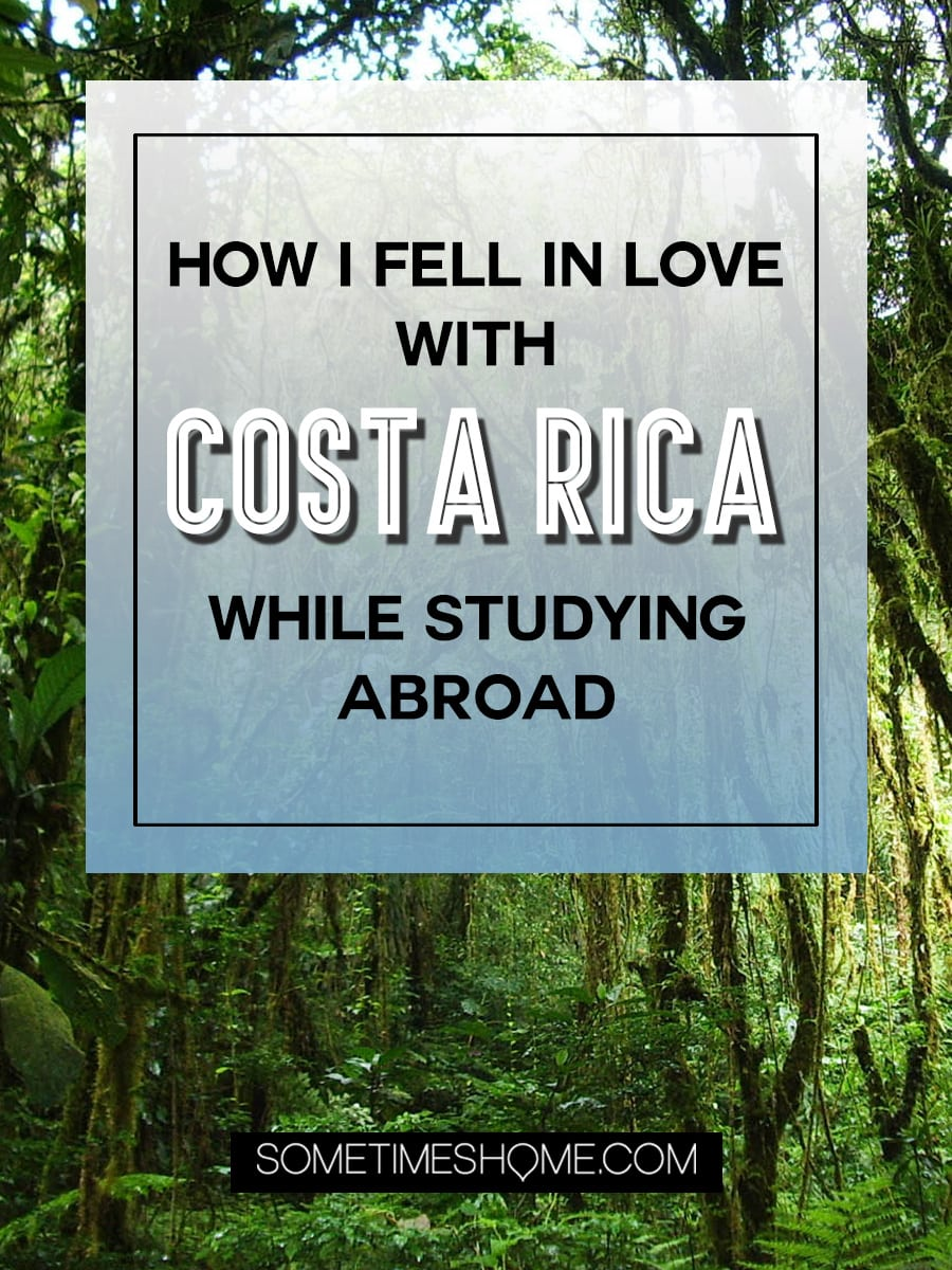 Studying abroad in Monteverde Costa Rica made a reluctant student fall in love with the country. Read about the Monteverde Institute and details of why the cloud forest (and rainforest) area in the northwest of this nation in Central America is the best place to be for ten weeks of studies on Sometimes Home. #CostaRica #Monteverde #StudyAbroad #CloudForest #Rainforest