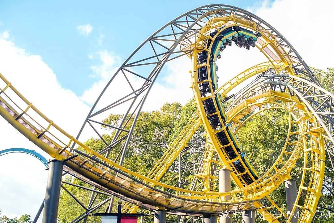 Must-read article on tips for Busch Gardens in Virginia to make the most of your vacation. We dish on what to bring, events for Christmas and Halloween, park hours, pictures of rides, food hacks, and more. This post will give you great ideas to make your trip a success. It's a fun thing to do while visiting Williamsburg, as a family with kids or adults. We have you covered on the best information so click through to read! #BuschGardens #Williamsburg #Virginia #ThemeParks