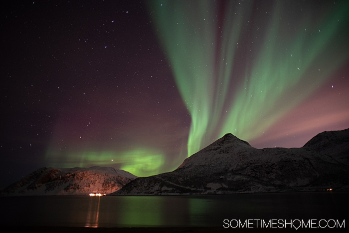 Tromso Norway is one of the best travel vacation destinations to see the Northern Lights, or Aurora Borealis. This incredibly beautiful bucket list goal is more achievable with an organized tour and we share info on why you must take one to be successful in your winter quest in the Arctic Circle, chasing the lights! #NorthernLights #TromsoTours #Norway #Scandinavia #AuroraBorealis #NorthernLightsTours #TromsoWinterTours