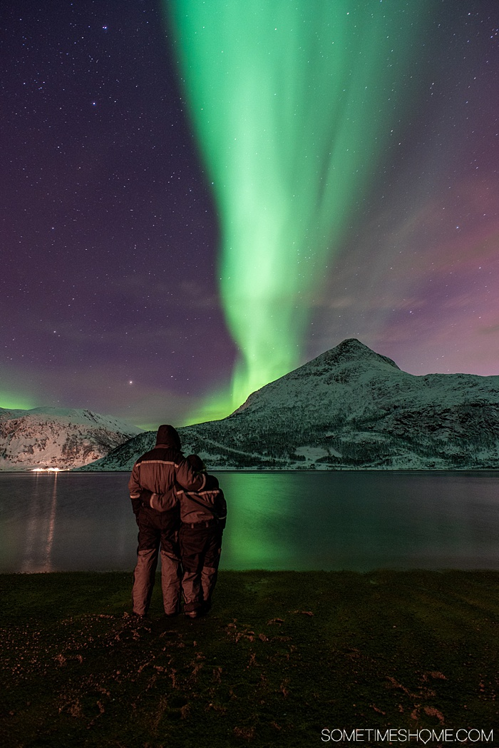 Tromso winter photos that will inspire you to travel to northern Norway during January or February. See bucket list things like Aurora Borealis (the Northern Lights), or participate in tours and things to do like feeding reindeer and taking a beautiful sleigh ride in the snow. #northernlights #sometimeshome #auroraborealis #reindeerfeeding #sleighride #tromsonorway #norway #tromsoinfebruary #tromsonorwayphotography