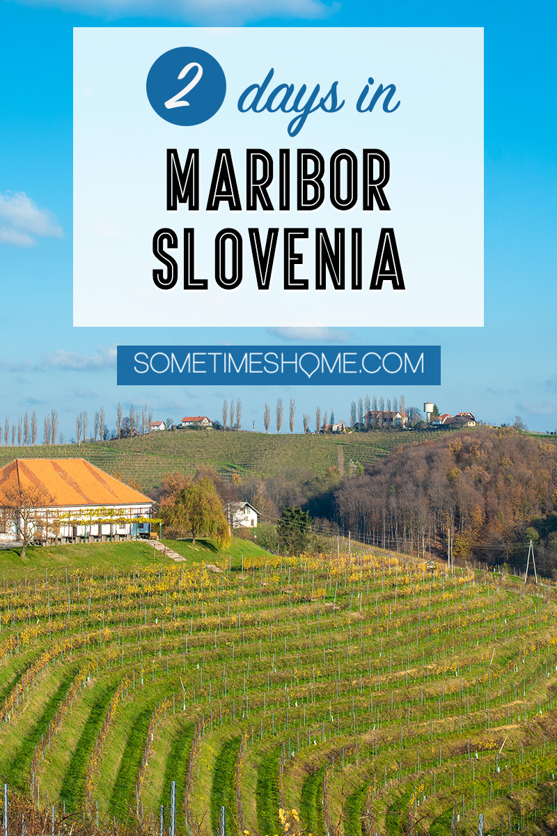 Wondering what things to do with two days in Maribor, Slovenia? From great food at one of the best restaurants in the nation, to wine and travel to vineyards, to ideal photography spots we have the best itinerary for a day in the historic city center and driving around the region. #Maribor #Slovenia #SometimesHome #SloveniaPhotography