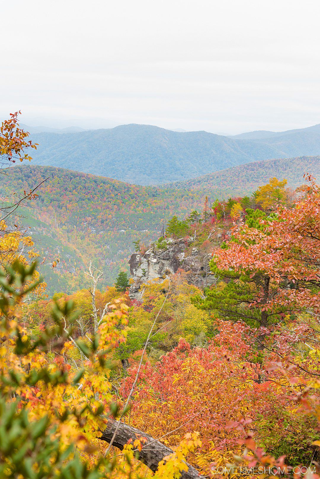One of the best things to do in the North Carolina mountains is hike! And we have your guide to the best hiking near Morganton, NC in Burke County near the Blue Ridge Mountains. Fall colors were at their peak in the Appalachian Mountains range at the time we took this beautiful photography at Table Rock in Linville Gorge Wilderness area. #sometimeshome #besthikingnorthcarolina #autumncolors #peakfallleaves #blueridgemountains