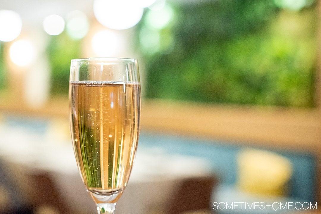 Cava wine in a champagne flute