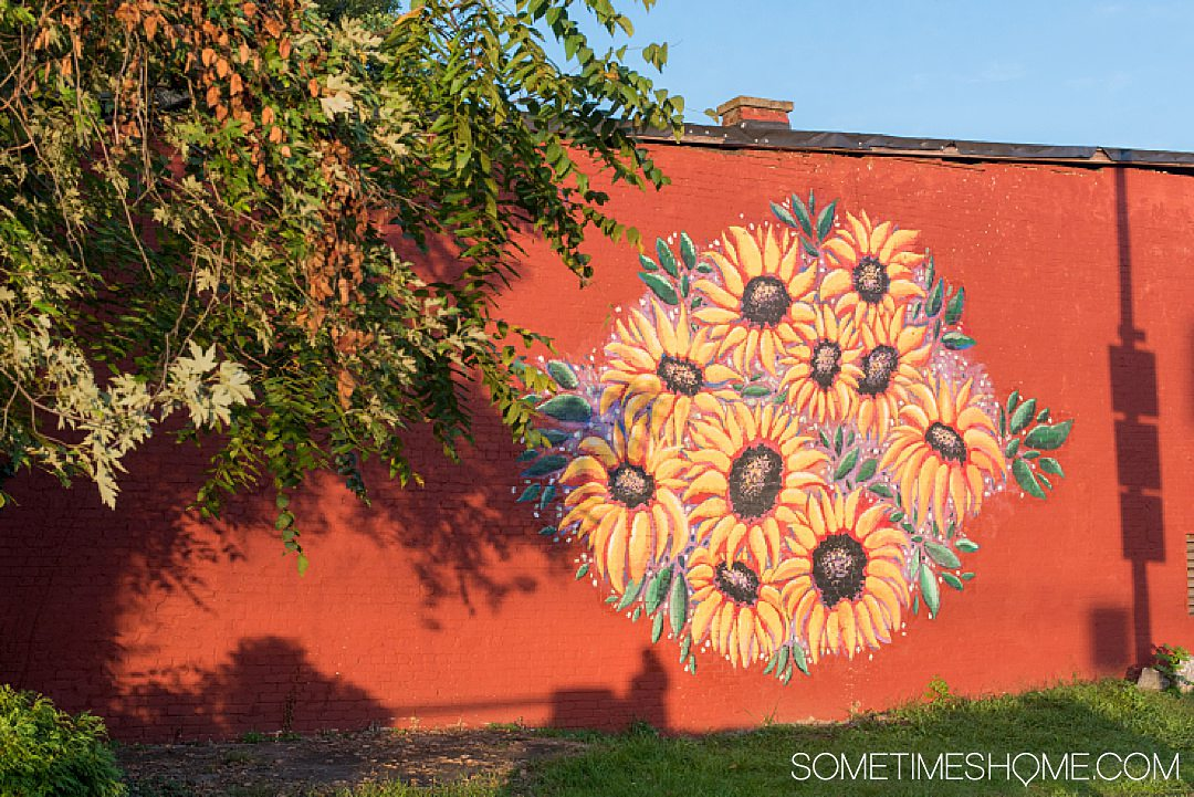 Mural of sunflowers on a red brick wall in Staunton, Virginia.