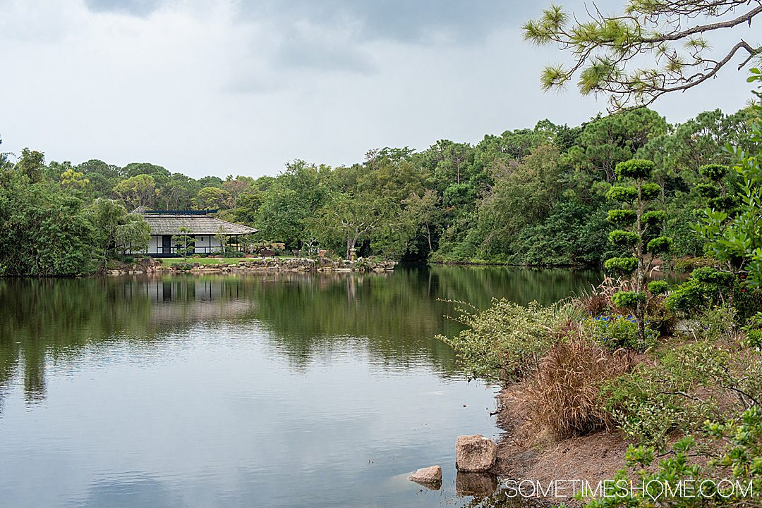 Things to do around Fort Lauderdale, Florida from new locals who lived in Florida for six months. Click through to see the unique places the locals go in this South Florida city including where to find this gorgeous Japanese garden. #SometimesHome #FortLauderdale #Florida