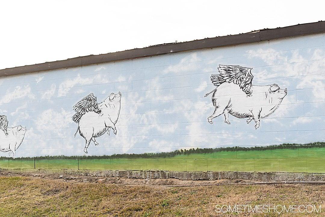 Flying pigs mural in Goldsboro, NC