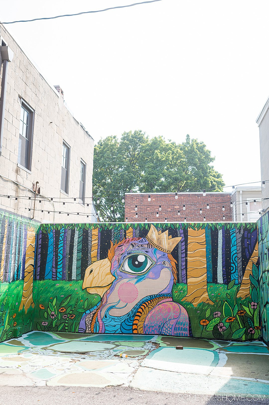 Colorful mural with a bird in York, PA