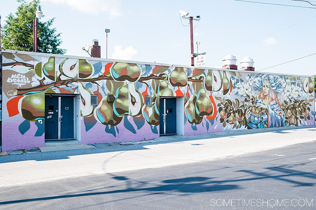 Mural with pears and shapes in York, PA