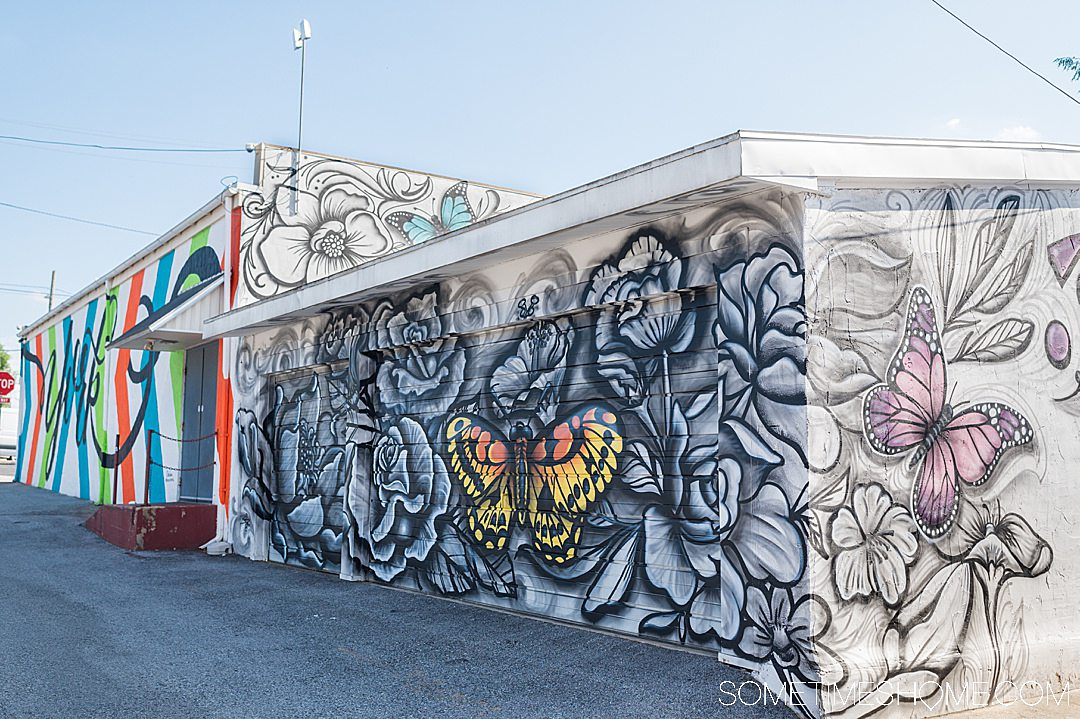 Black and white mural with colorful butterflies in York, PA
