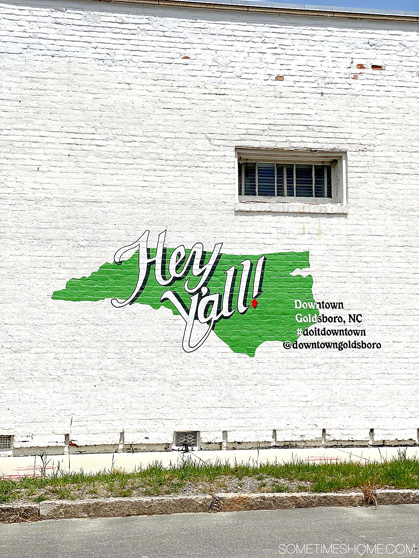 Hey Y'all North Carolina state mural in Goldsboro, NC
