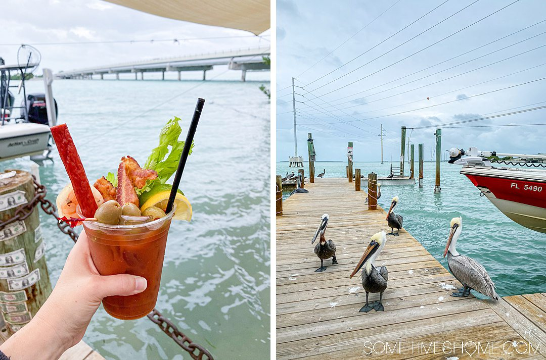 Two side by side photos: a bloody mary cocktail and pelicans on a dock.