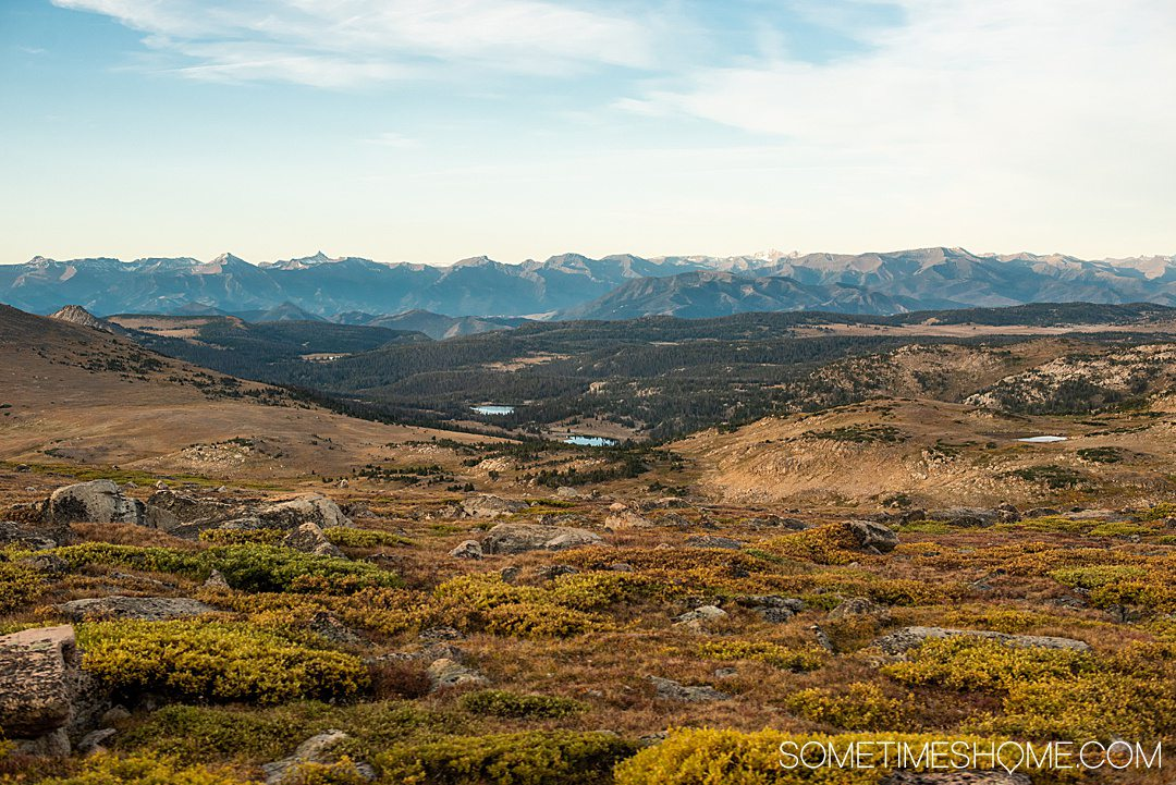 Amazing view out to the mountains with brown grass in the foreground on the scenic drive of Beartooth Highway.