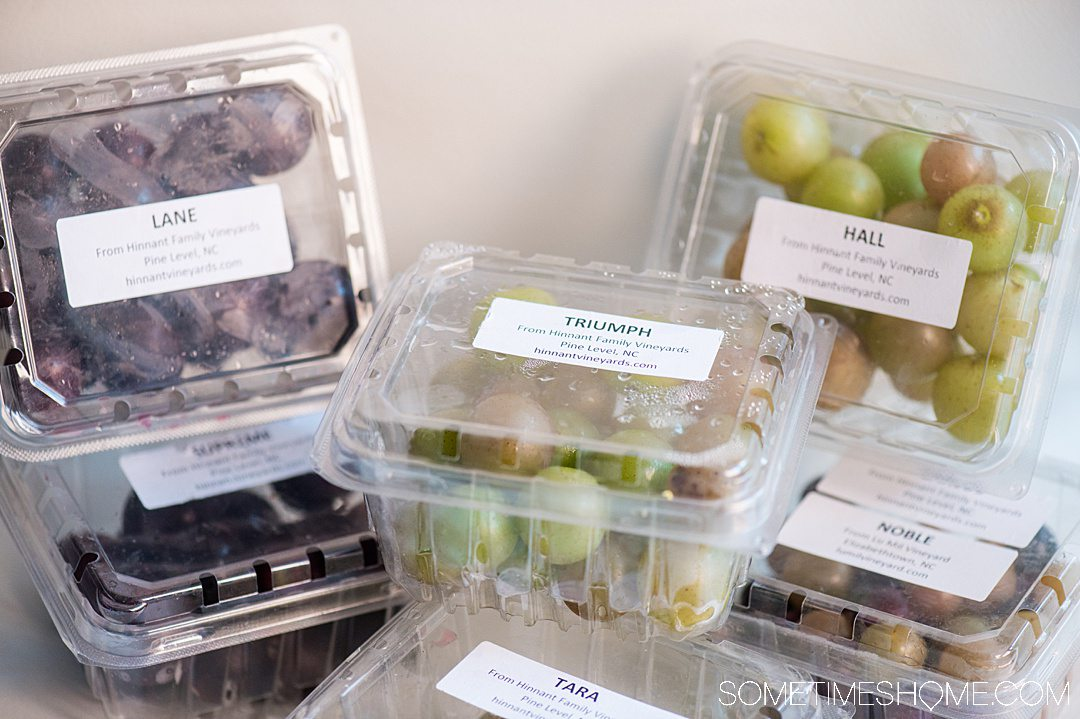 Plastic clamshell boxes of muscadine grapes