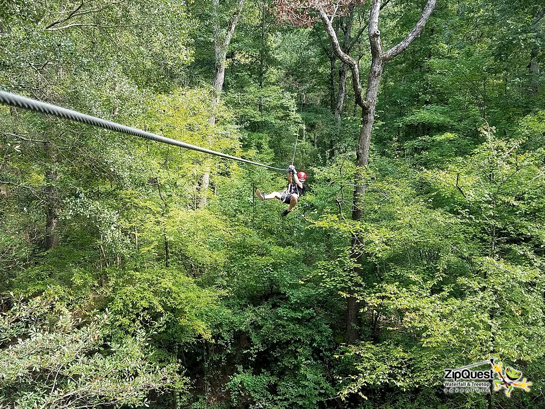 Image of a man zip lining in the forest for a date idea in Fayetteville, NC