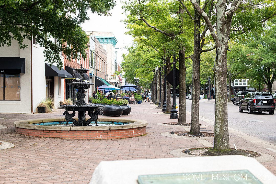 Streetscape of the downtown Fayetteville, NC area with a fountain painted black on the left of the brick pathway and trees lining the street on the right.