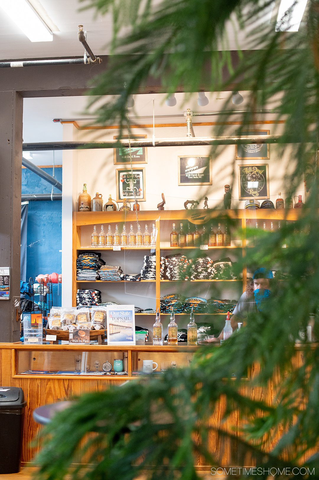 Pine tree branches and leaves in the foreground with merchandise shelves inside a distillery in the background at Outer Banks Distilling in North Carolina.