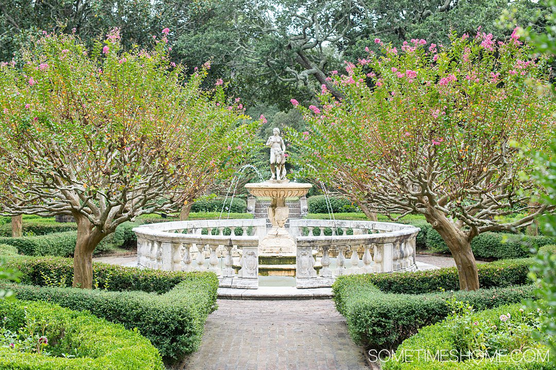 The sunken garden, a formal English garden, at the Elizabethan Gardens on Roanoke island in the Outer Banks, surrounded by pink flowers Crape Myrtle trees.
