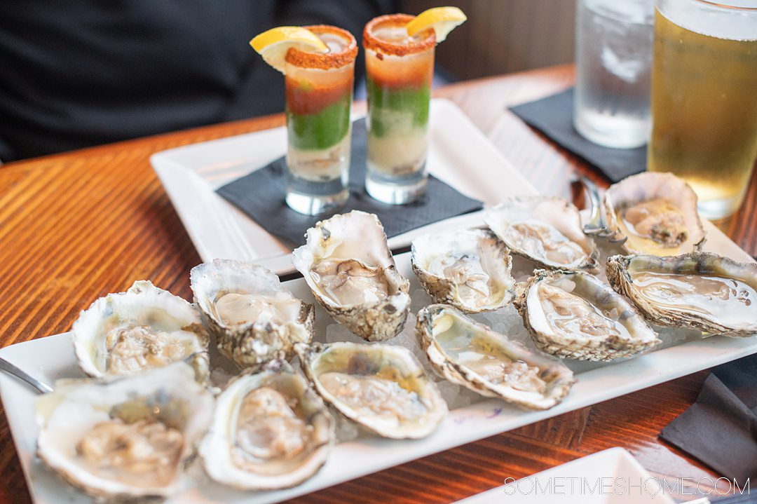 A plate of a dozen raw oysters and two colorful shot glasses behind it.