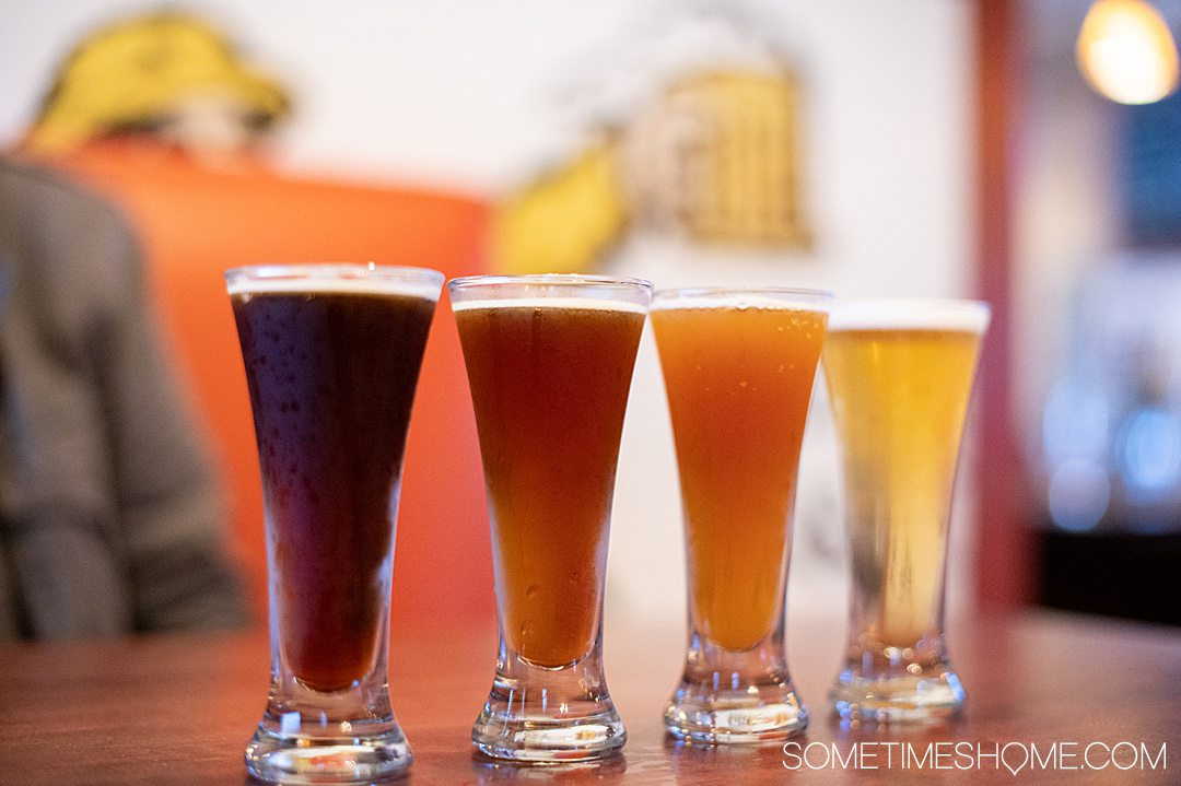Four small pours of beer in a row for a flight in the Outer Banks.