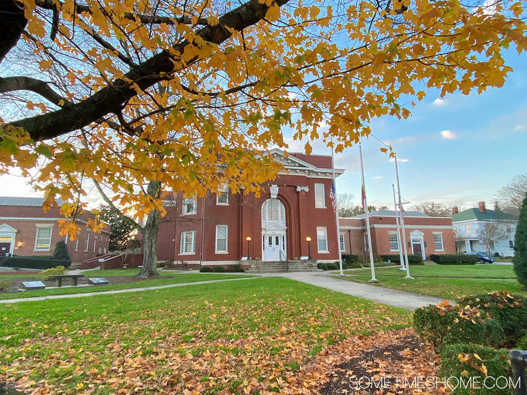 Yellow leaves in the foreground and a blue sky in the background above a brick building, which is a courthouse in Warrenton, NC.