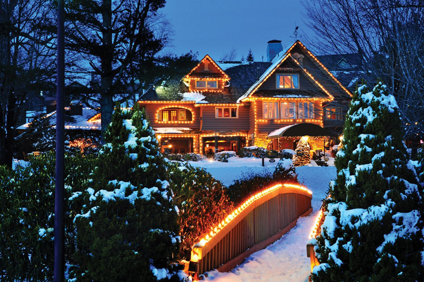 Winter scene at dusk, with a house in the distance bordered by white Christmas lights and snowy green evergreen trees in the foreground.