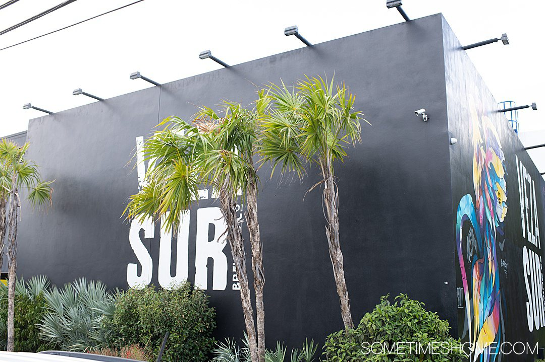 Vera Sur brewery in Wynwood, Miami with a black wall, white letters and palm trees in front.