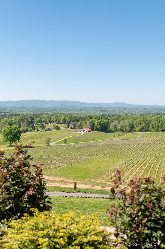 A view of a valley part of the Yadkin Valley Wineries, with mountains, green grass and a blue sky in the distance.