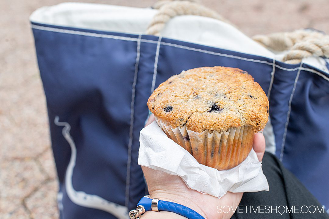 Hand holding a blueberry muffin, a food Maine is known for.