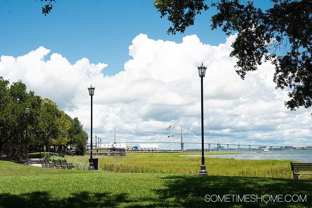 View of Ravenel Bridge in Charleston as seen from Waterfront Park.
